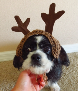 Sparky the Reluctant Reindeer